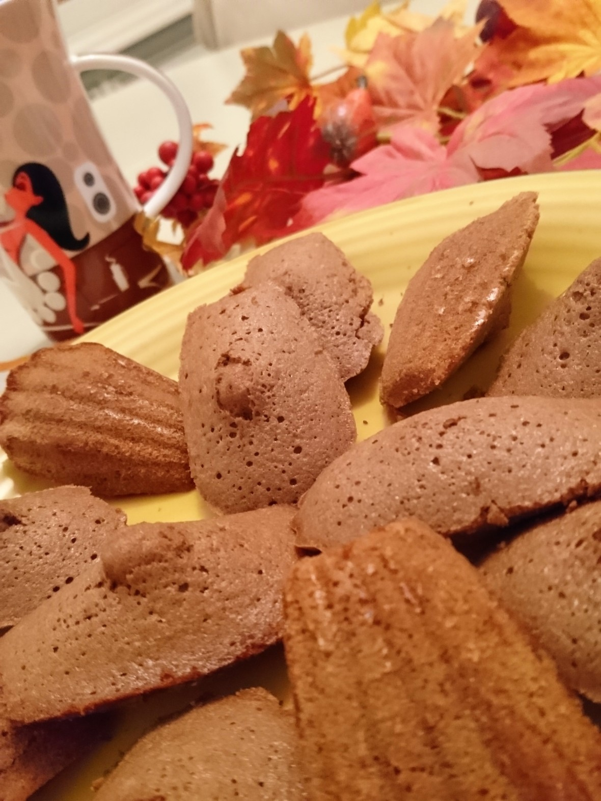 Madeleines chocolat Sony 012 (2)