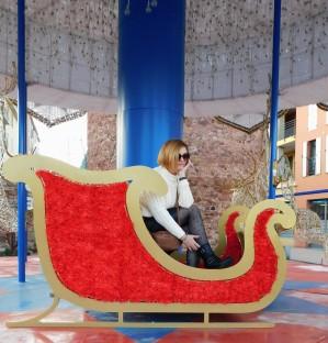 Manteau mouton 1 Fréjus-centre 007 (2)